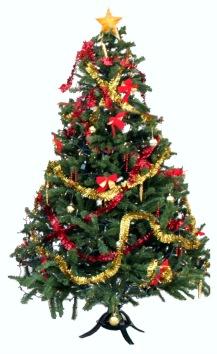 TL CHRISTMAS DOUGHNUT